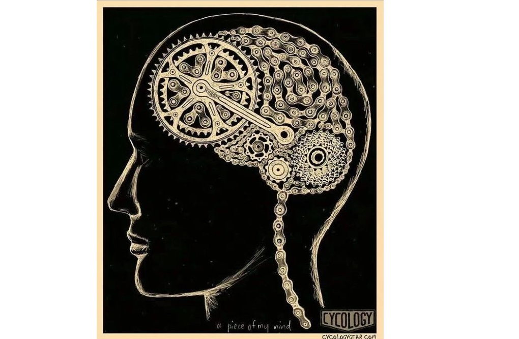 Cycling And Brain Function – How It Helps